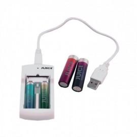CARREGADOR DE 2 PILHAS USB + 2 PILHAS AA E 2 AAA REF PB310